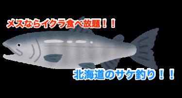 秋の北海道で海岸から鮭を釣ろう